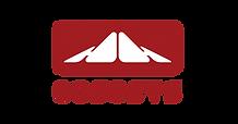 logo-COSOSYS.png