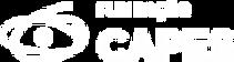 logo-capes (1).png