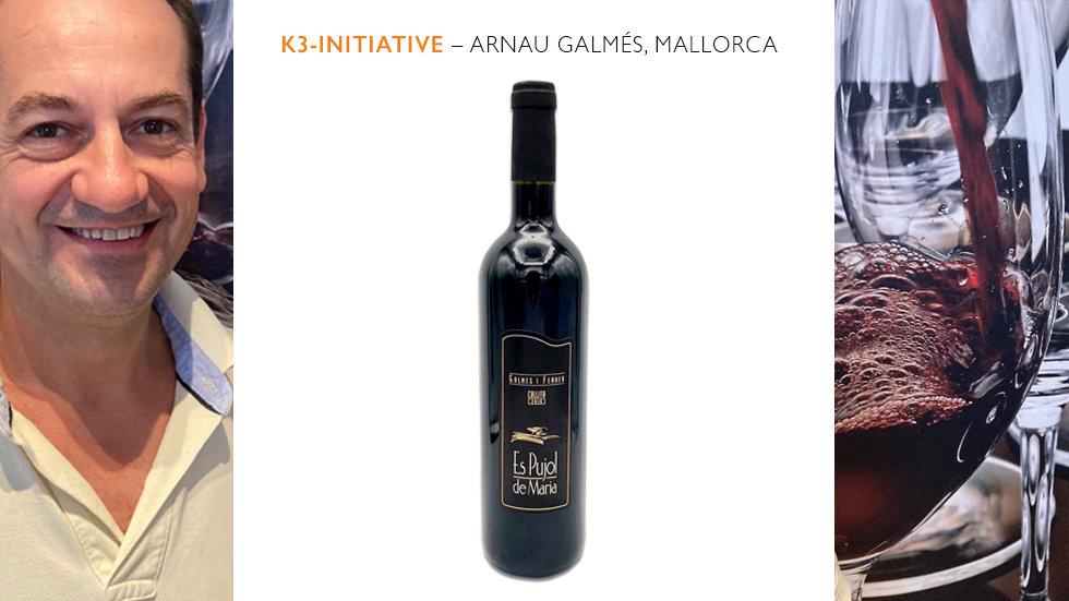 Galmés i Ferrer – Es Pujol de Maria, Vino Tinto