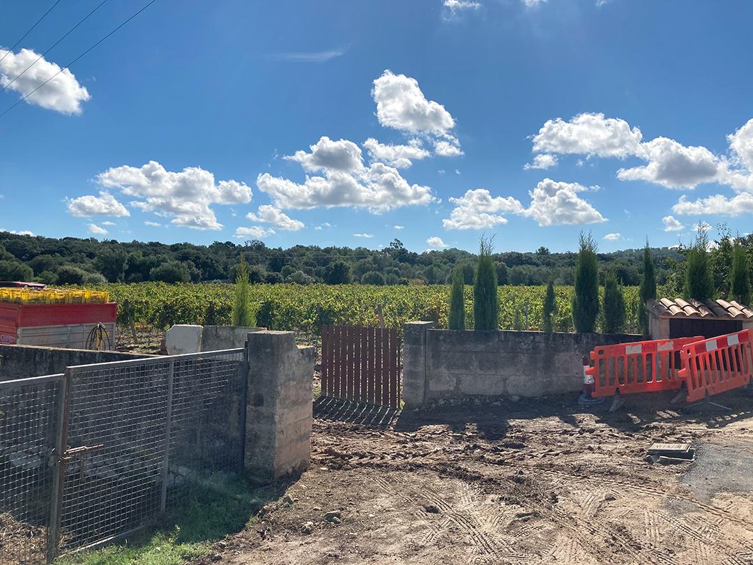 Weinbau-Land