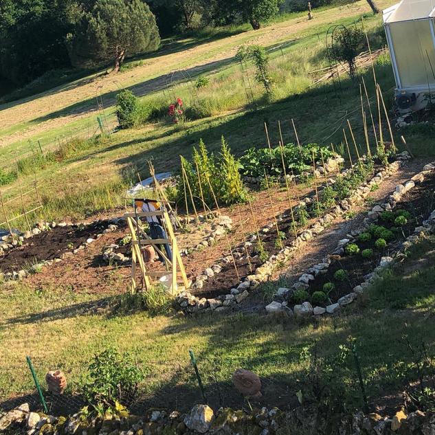 Forge's kitchen garden