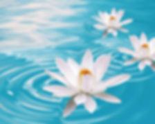 Lotus-Flower-Drawing-Images-Wallpaper-12
