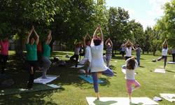 Medjunarodni dan joge