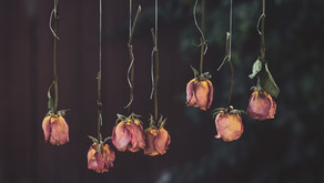 3 Common Ways to Dry Flowers