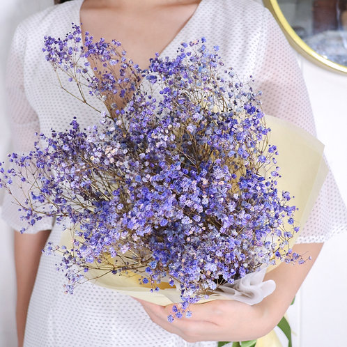Baby Breath In Purple