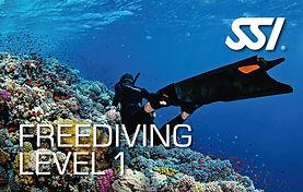 freediving level 1 SSI - FRONTEIRA SUB.j