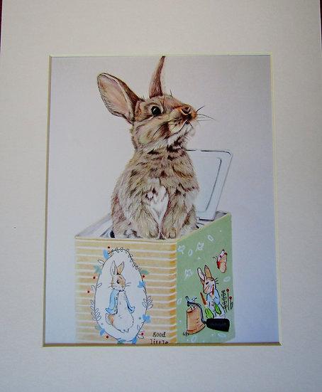 """ POP Goes the Rabbit "" 8 x 10 Print"