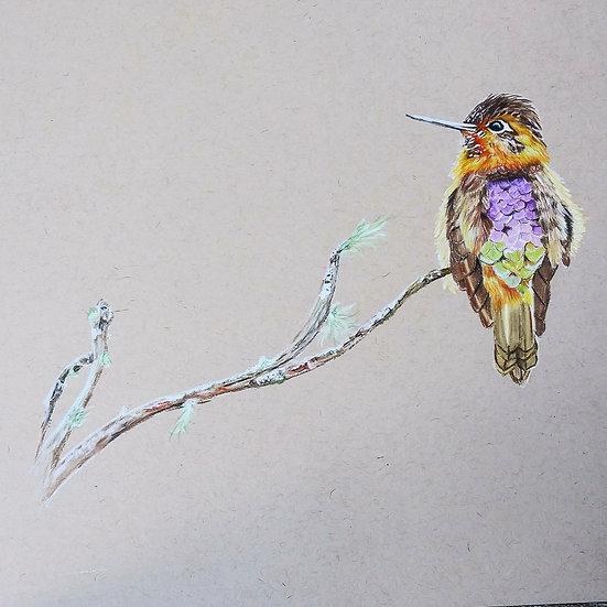 Bird original artwork