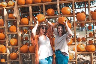 PumpkinHouse.jpg