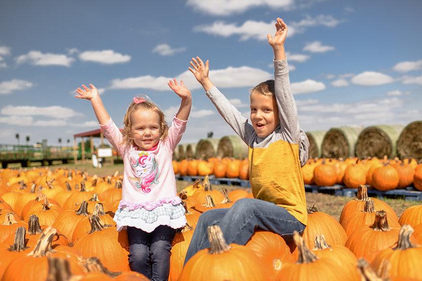 Maxwell_Pumpkin_Farm_Pumpkins (28) (2).j