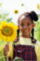 Girl Holding Sunflower Stock.png