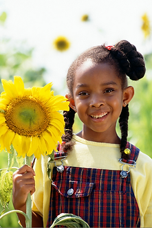 Girl Holding Sunflower Stock.png
