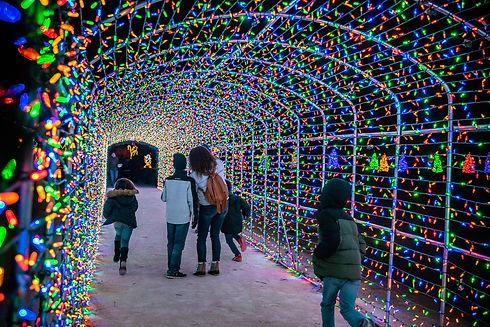 ChristmasLightsAmarillo.jpg