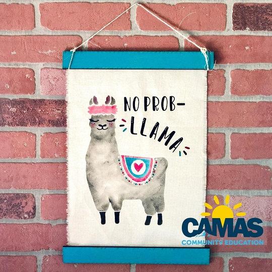 Summer Camp | Llama