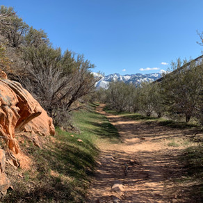 Emigration Canyon Miners Trail ◼︎