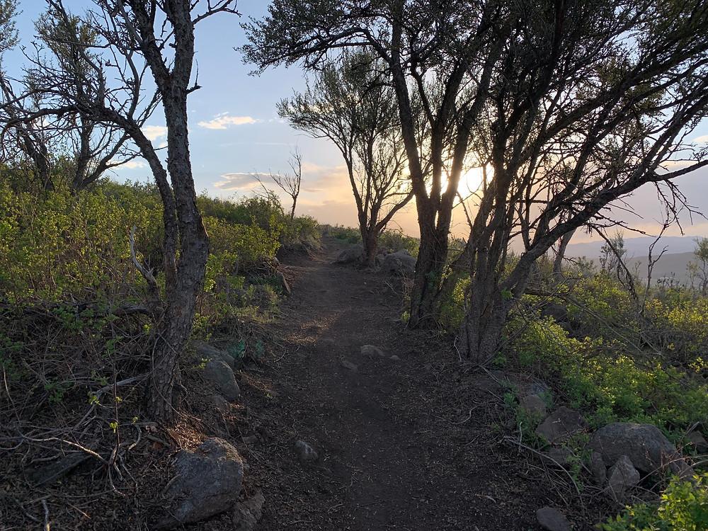 Skyridge Peak hike