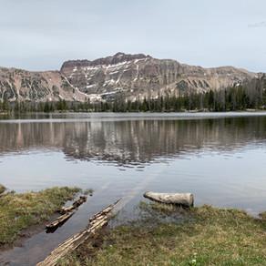 Ruth Lake ◉