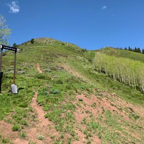 Murdock Peak ♦︎