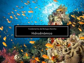 Biologia Marinha: Hidrodinâmica