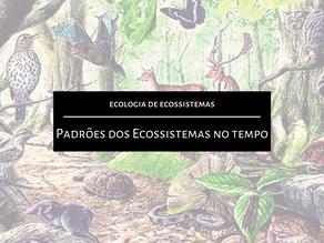 Ecologia de Ecossistemas: Padrões dos Ecossistemas no tempo