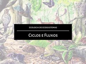 Ecologia de Ecossistemas: Ciclos e fluxos