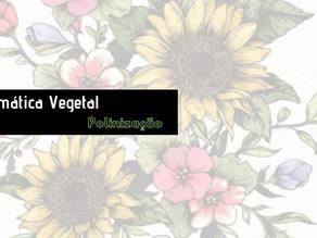 Sistemática Vegetal: Angiospermas basais (APG II)