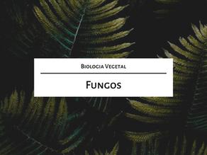 Estude para o mestrado comigo: Fungos