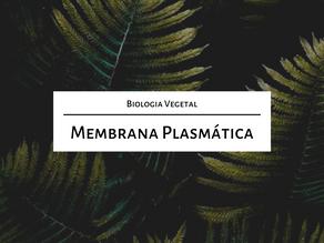 Estude comigo para o Mestrado: Membrana plasmática