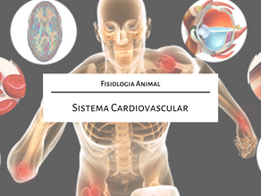 Fisiologia Animal: Sistema cardiovascular