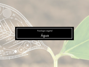 Fisiologia Vegetal: Água