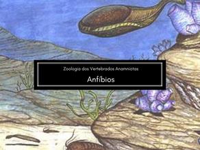 Zoologia dos Vertebrados: Anfíbios