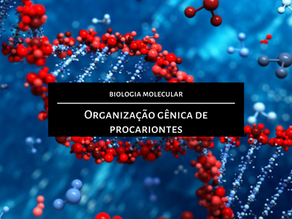 Biologia Molecular: Organização gênica de procariontes