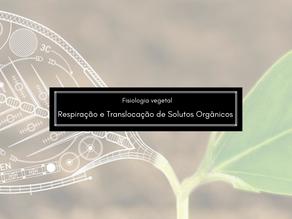 Fisiologia Vegetal: Respiração Celular e Translocação de Solutos Orgânicos