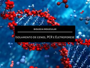 Biologia Molecular: Isolamento de genes, PCR e Eletroforese