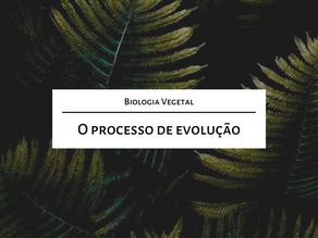 Estude comigo para o Mestrado: O processo de evolução