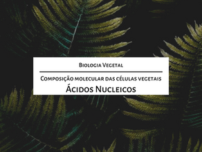 Estude para o mestrado comigo: A composição molecular das células vegetais – Ácidos nucleicos