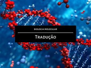Biologia Molecular: Tradução