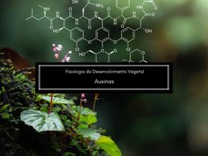 Fisiologia do Desenvolvimento Vegetal: Auxinas
