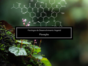 Fisiologia do Desenvolvimento Vegetal: Floração