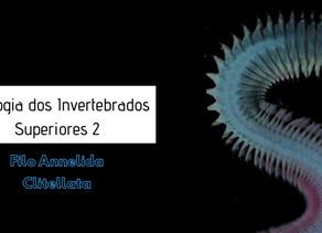 Zoologia dos Invertebrados Superiores: Annelida – Classe Clitellata