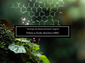 Fisiologia do Desenvolvimento Vegetal: Etileno e ácido abscísico (ABA)
