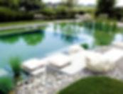piscina-biologica-600x461_edited.jpg