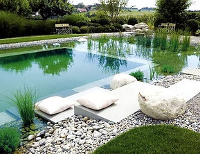 piscina biologica