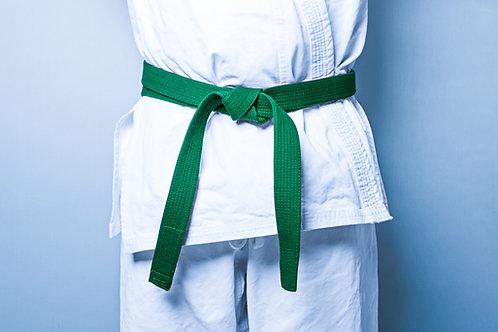 Six Sigma/Lean Certification: Green Belt
