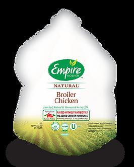 Broiler Chicken