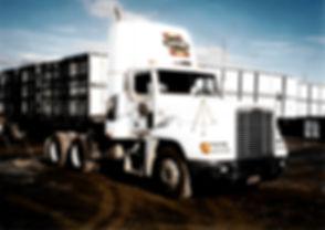 single truck.jpg