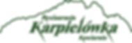 logo_CMYK.png