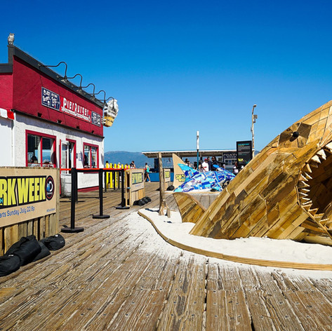 Sharkweek 2.jpg