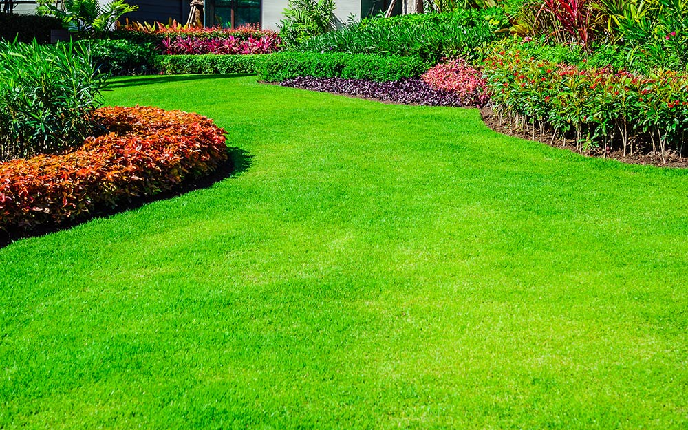 front-yard-landscaping-