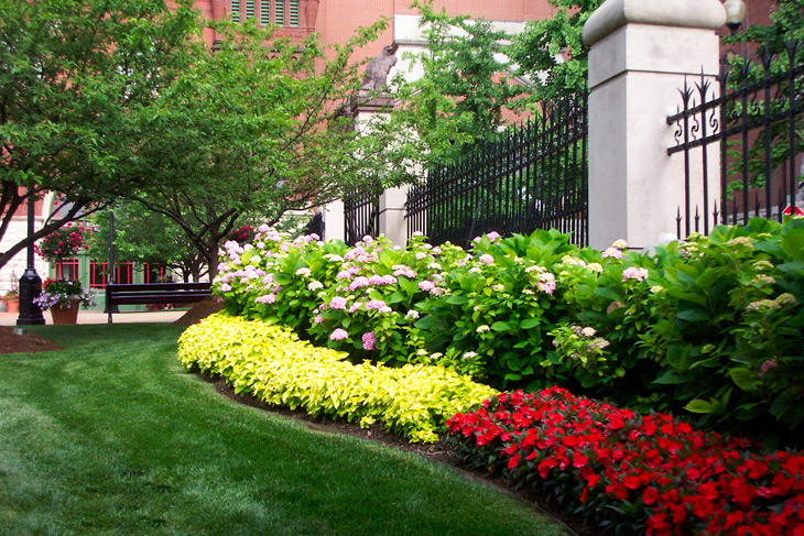 commercial-landscaping